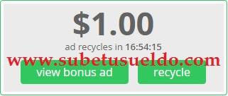 dolar paidverts